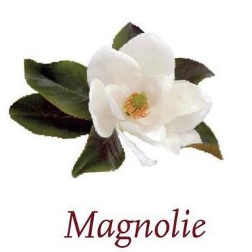 Scented Cubes - Magnolien