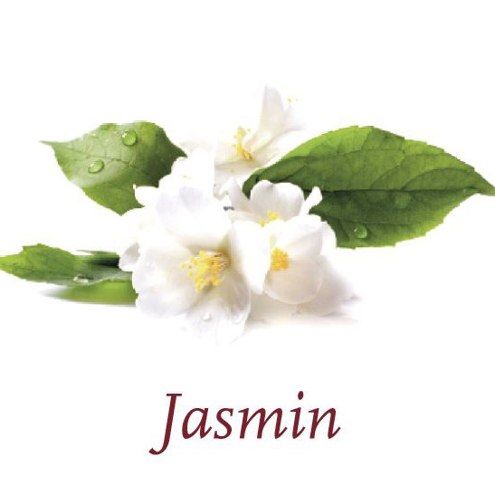 Scented Cubes - Jasmin